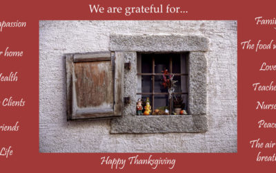 Happy and Safe Thanksgiving